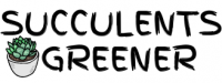 cropped-cropped-Succulents-Greener.png